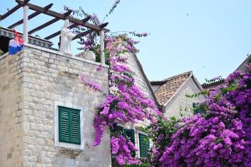 Houses in Split