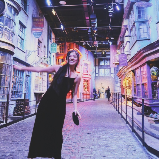 Diagon Alley!! Unlike regular tour visits, this event really allows you to absorb into the Harry Potter world and sets without the usual CROWD.