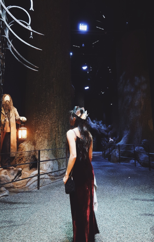 Entering the forbidden forest! Hagrid was there to greet me.